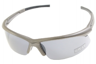 Guarder Protection Glasses 2010 Version in Hard Case (Metal Grey)