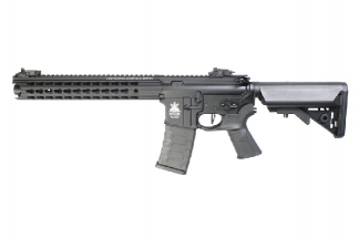 APS AEG LPARS Rifle (Black)