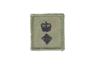 Helmet Rank Patch - Lieutenant Colonel (Subdued)