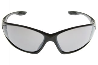 Guarder Protection Glasses 2006 Version