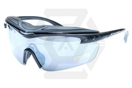 Guarder Protection Glasses 2014 Version with Rigid Case