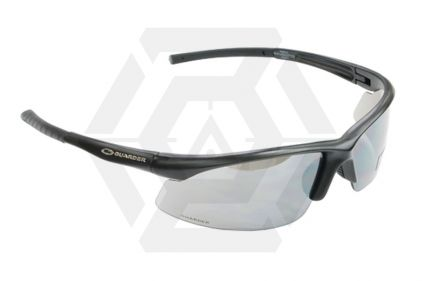 Guarder Protection Glasses 2010 Version in Hard Case (Black)