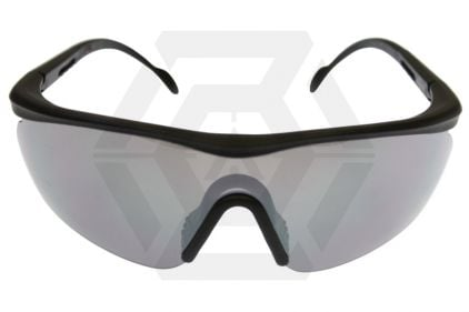 Guarder Protection Glasses 2007 Version with Rigid Case